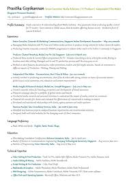 goldfish bowl resume example junior accountant throughout examples 87 marvellous examples of excellent resumes