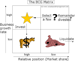 summary of the bcg matrix  abstractthe bcg model
