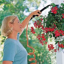 Watering Tips, When to Water | Gardener's Supply