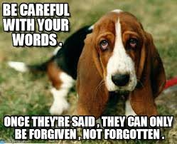Be Careful With Your Words . - Sad Dog meme on Memegen via Relatably.com