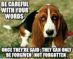 Sad Dog memes on Memegen via Relatably.com