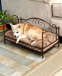 small dog furniture. small medium dog bed couch pet furniture raised cat cot indoor outdoor wcushion s