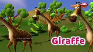 Interesting <b>Animal</b> Facts : <b>Giraffe</b> | <b>Giraffe</b> Essay in English | Learn ...
