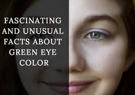 Fascinating and Unusual Facts About <b>Green Eye</b> Color | Owlcation