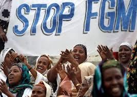 Image result for fgm