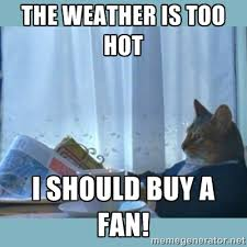 The weather is too hot I should buy a fan! - rich cat | Meme Generator via Relatably.com