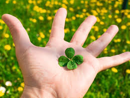 Why are <b>four</b>-<b>leaf clovers lucky</b>? | HowStuffWorks