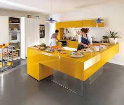 cabinet modern kitchen design