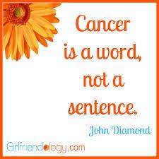 Quotes For Friends With Cancer. QuotesGram via Relatably.com