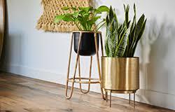 Furniture - Affordable & <b>Unique</b> Home Sets | World Market