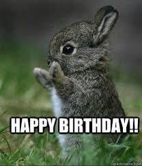 50 Best Happy Birthday Memes 10 | Birthday Memes | birthday ... via Relatably.com
