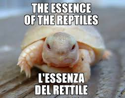 The <b>essence</b> of the <b>reptile</b> - Community | Facebook