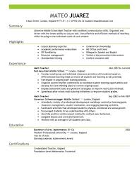 resume templates example professional examples best 81 remarkable professional resume layout templates