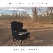 <b>Culcha</b> Vulcha by <b>Snarky Puppy</b> on Spotify