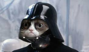 Grumpy Cat Star Wars Latest Memes - Imgflip via Relatably.com
