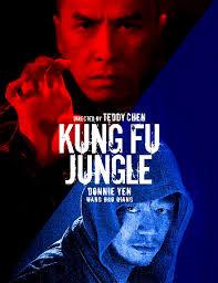 Kung Fu killer के लिए चित्र परिणाम
