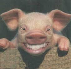 """Résultat de recherche d'images pour """"caricatures des porcs"""""""