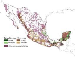 Biodiversidad y conservación de bosques Neotropicales