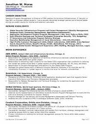 good resumes objectives good objective statements resume template       good resume objective statements Isabelle Lancray