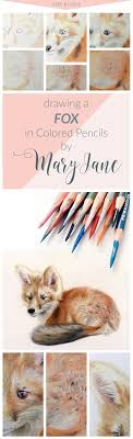best ideas about colored pencil tutorial color 10 easy to follow steps for drawing a fox