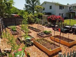 Small Picture Imaginative Garden Design Plans Australia 2510x1720 Eurekahouseco