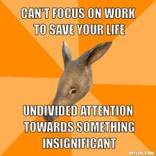 Adhd Aardvark Meme Generator - DIY LOL via Relatably.com