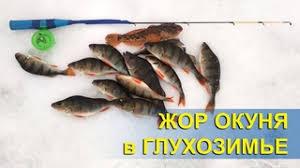 Видеозаписи Рыбалка в Николаеве ([Украина] → [Николаев ...