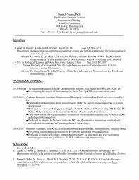 resume for grad school resume format pdf resume for grad school resume template 16 essay scholarships high school seniors resume graduate cover