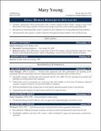 Entry Level It Resume Sample Resume For Your Job Application