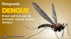 Resultado de imagem para Anvisa aprova primeira vacina contra dengue no país