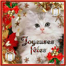 """Résultat de recherche d'images pour """"noel et chat"""""""