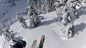 Image result for Pivoting on skis