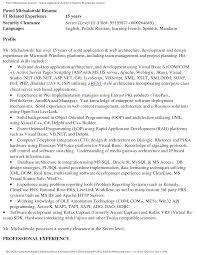 architect resume s architect lewesmr sample resume senior architect resume sle sap