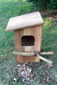 Building a Barred Owl Nest Box   MyNature AppsI figured I would incorporate several of the ideas I  and have a go at building my own owl nest box  The end result   they came