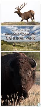 best ideas about theodore roosevelt national park adventures in theodore roosevelt national park