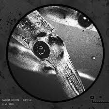 SUBSIST.18D Datura Dilema - Orbital