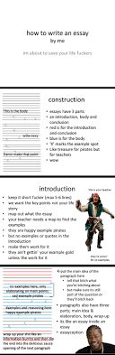 how to write an essay the meta picture how to write an essay
