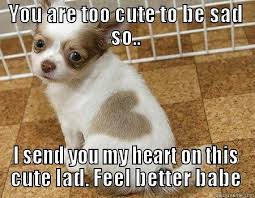 Heart puppy - quickmeme via Relatably.com