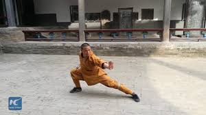 Amazing Kung Fu: Fast and powerful martial arts display at Mt Song ...