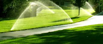 Image result for cost estimate for irrigation system