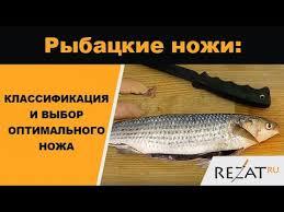 <b>Рыбацкие ножи</b>: классификация и выбор оптимального | Обзор ...