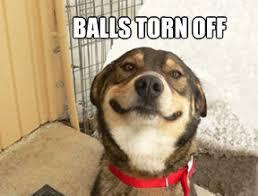 SMILING MEMES image memes at relatably.com via Relatably.com