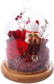 Scmkd Cat Eternal Flower Glass Cover Gift Box ... - Amazon.com