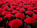 social conformity