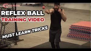 Boxing Reflex <b>Ball</b> must learn <b>tricks</b>! Boxing workout for reflexes ...