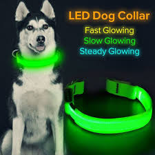 LED Cats / <b>Dog Safety Collar</b> - 23 Photos - <b>Pet</b> Supplies -