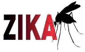Image result for site:gov zika images