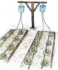 Small Picture The 25 best Drip irrigation ideas on Pinterest Irrigation