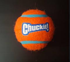 chuckit tennis balls review kai reviews chuckit tennis ball