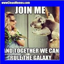 funny-clean-memes-pinterest-2-272x273.jpg via Relatably.com